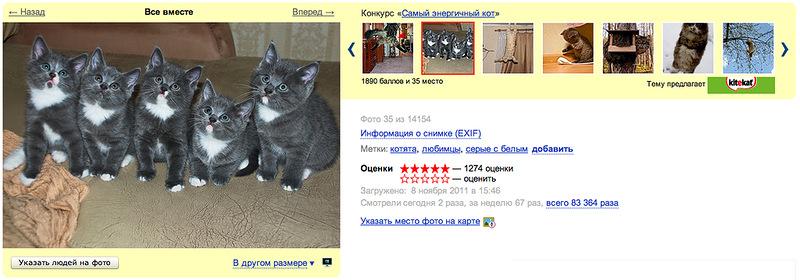 Рекламный проект на Яндекс.Фотки стал самым популярным
